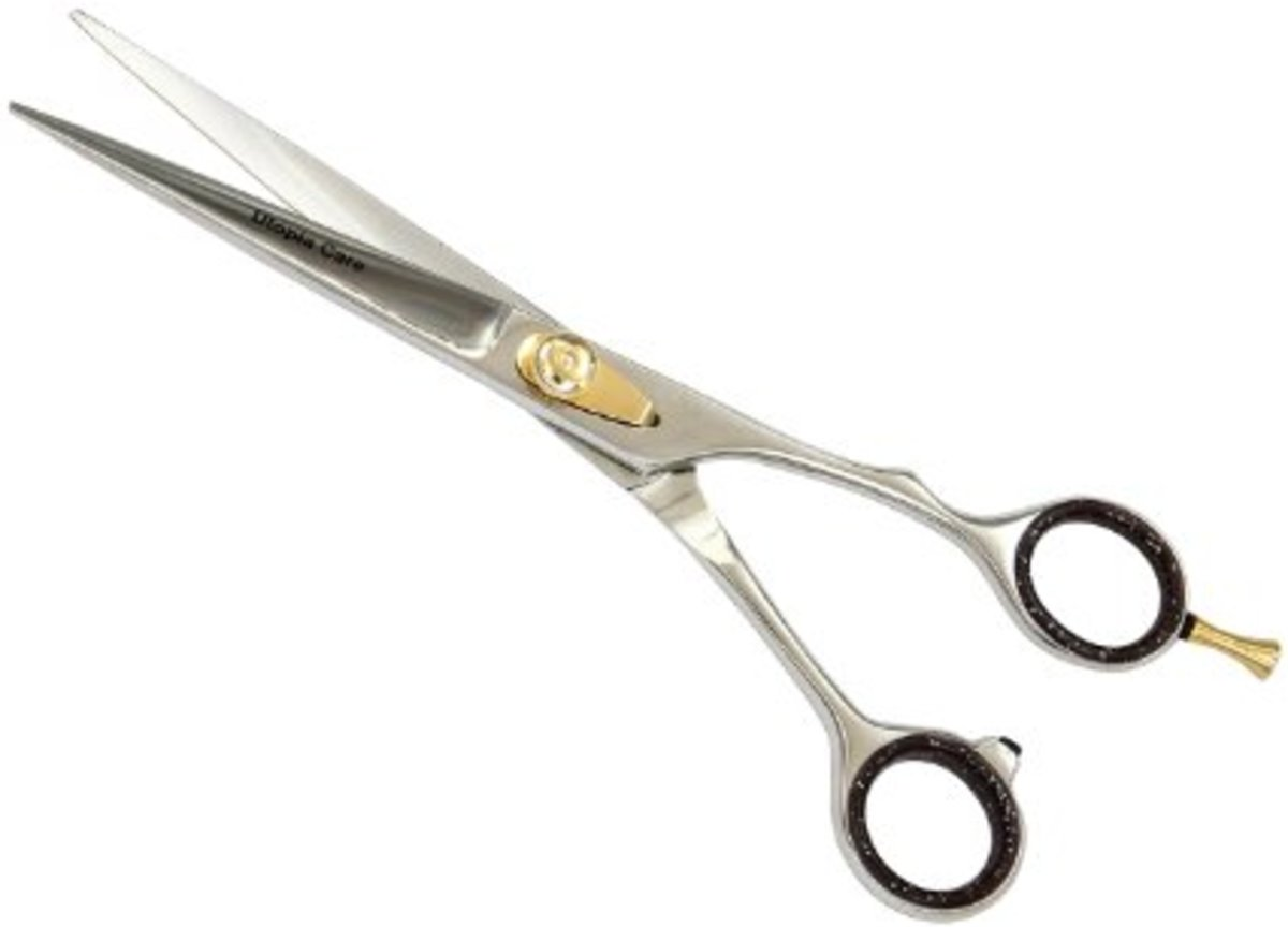 Professional Barber Scissors. Pretty fancy, and not expensive.