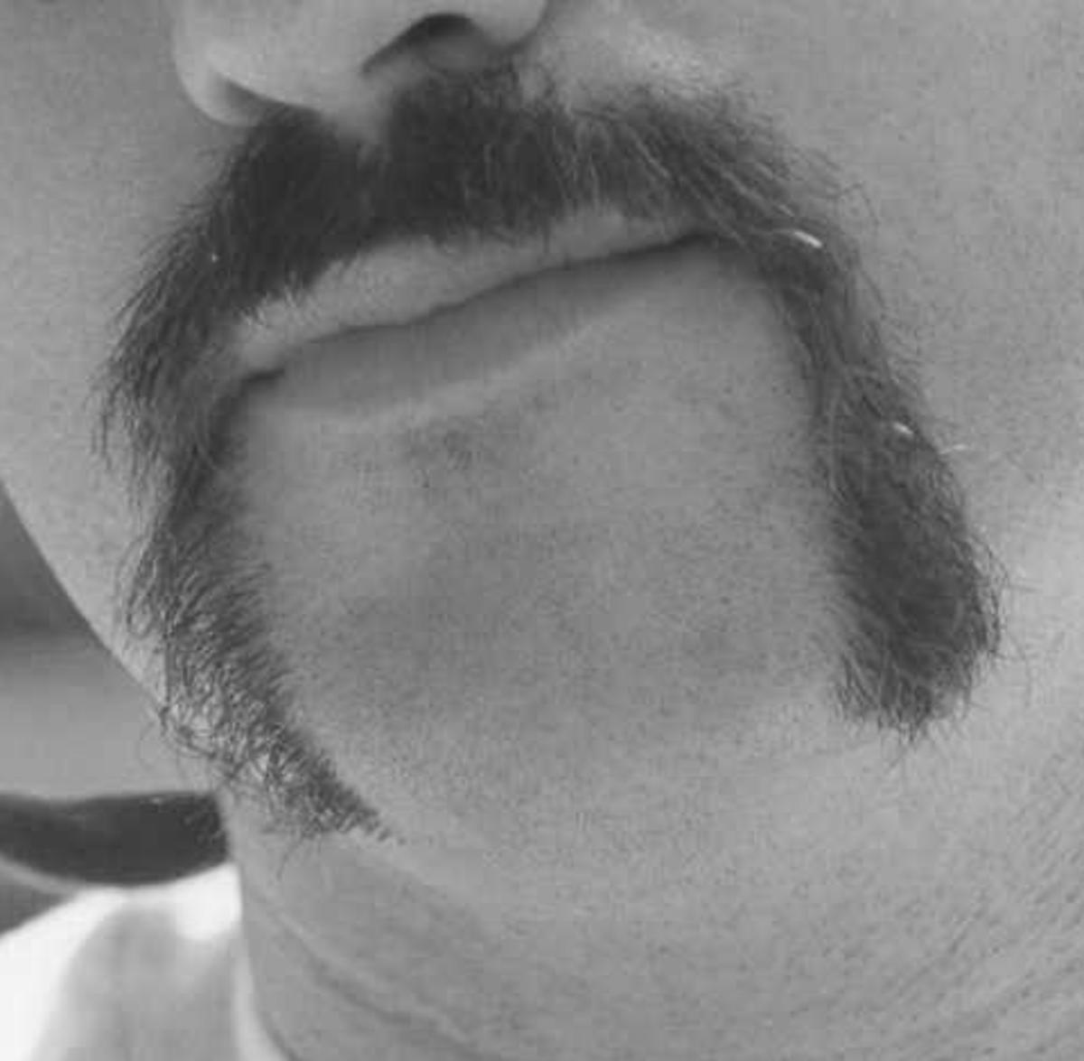 The horseshoe mustache.
