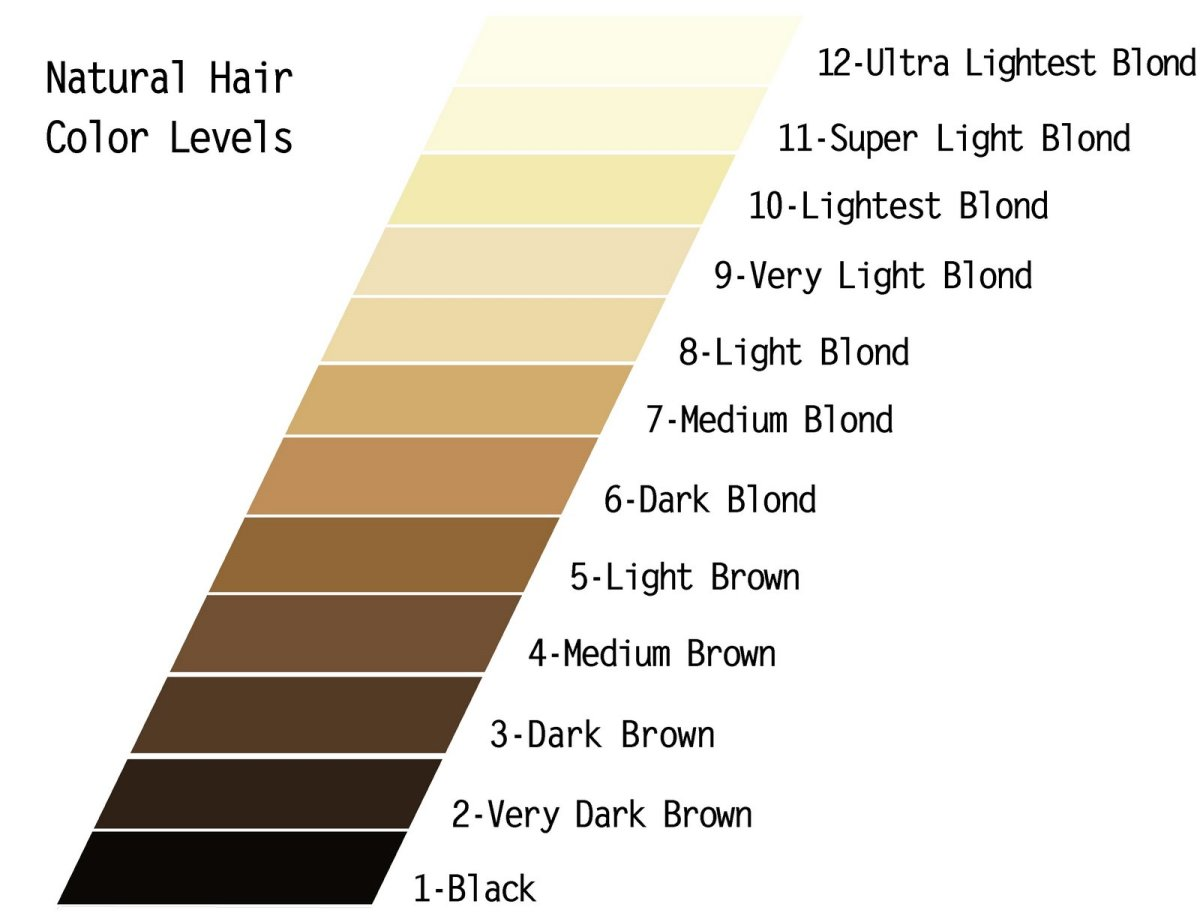 Natural Hair Color Chart