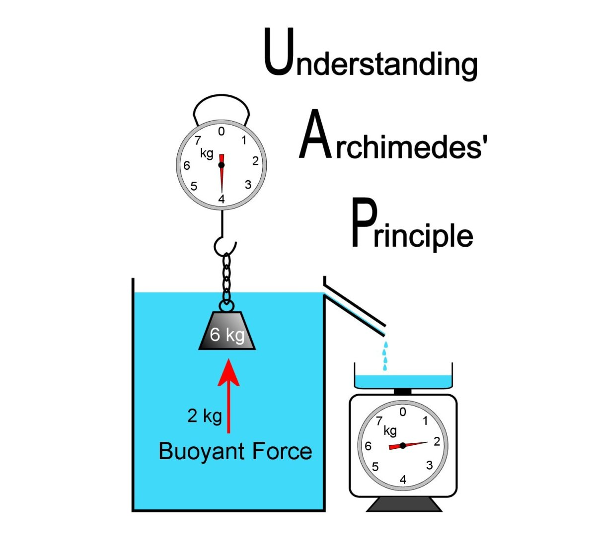 Archimedes' Principle Experiments and Buoyant Force