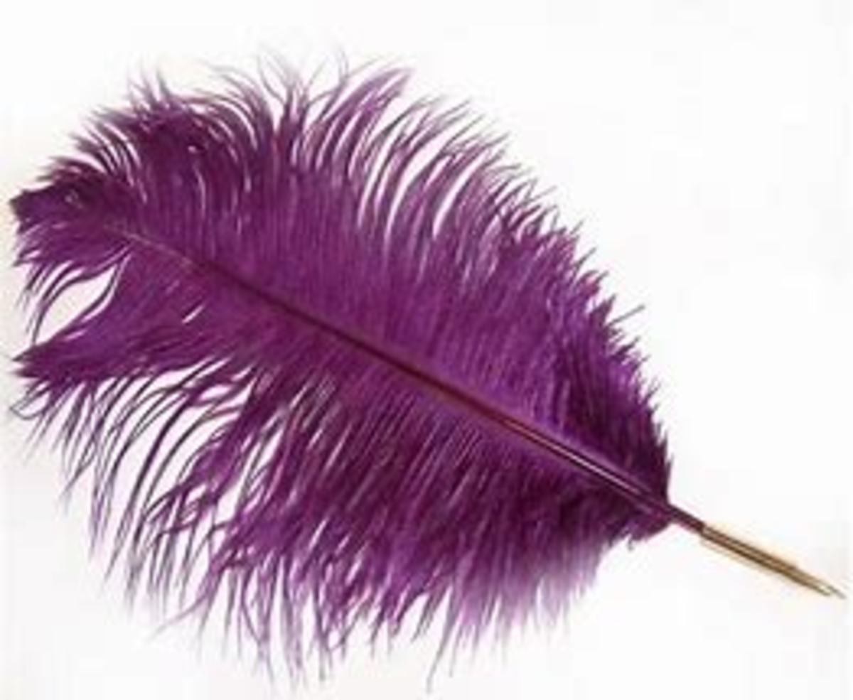 Purple Verbosity