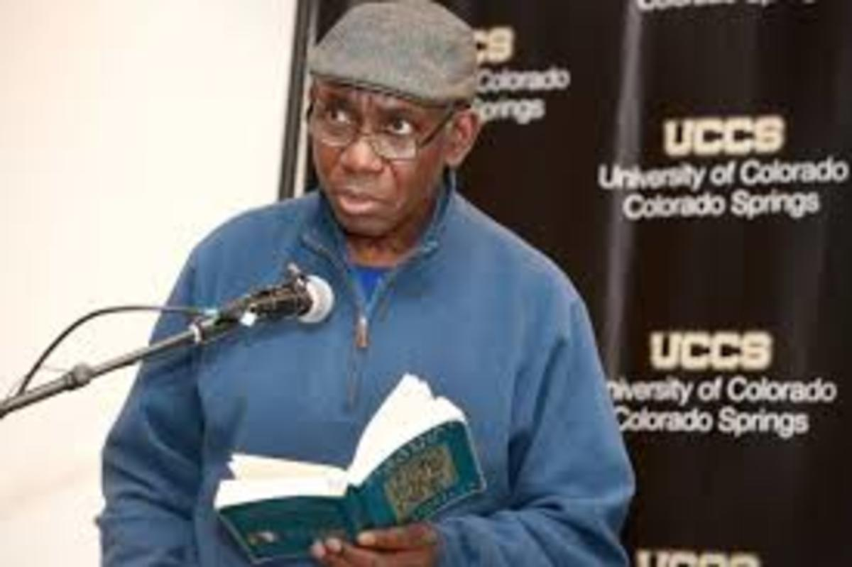 Analysis of Poem Camouflaging the Chimera by Yousef Komunyakaa