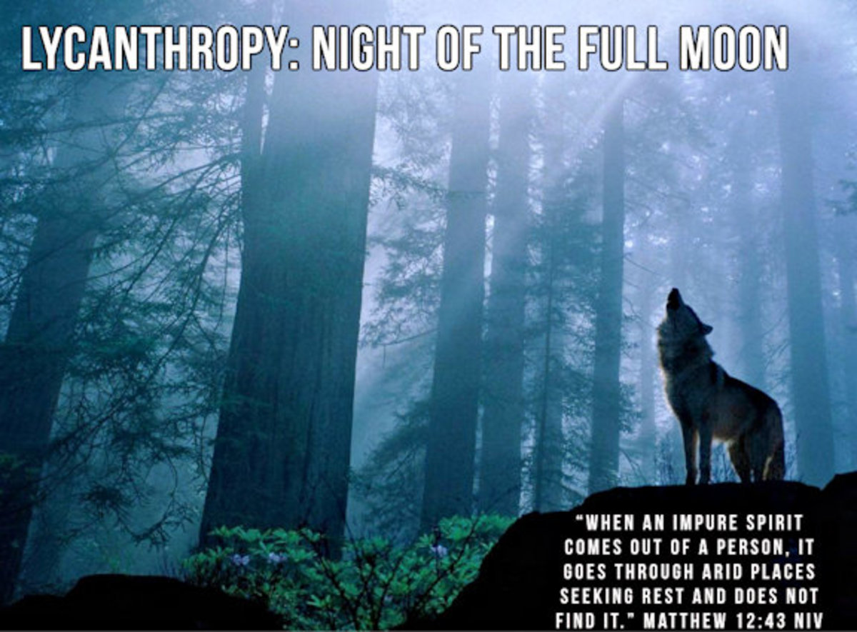 Lycanthropy: Night of the Full Moon 12