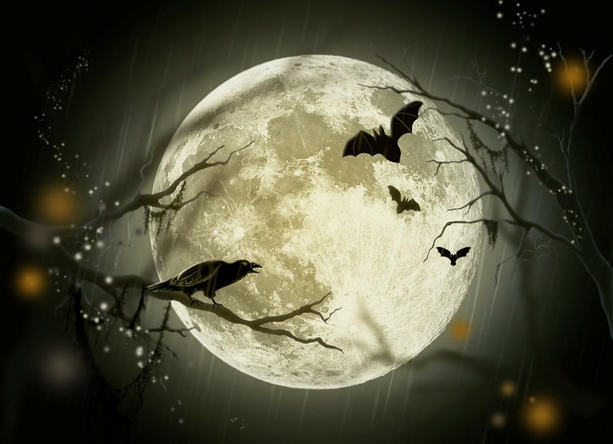 The Halloween Conundrum