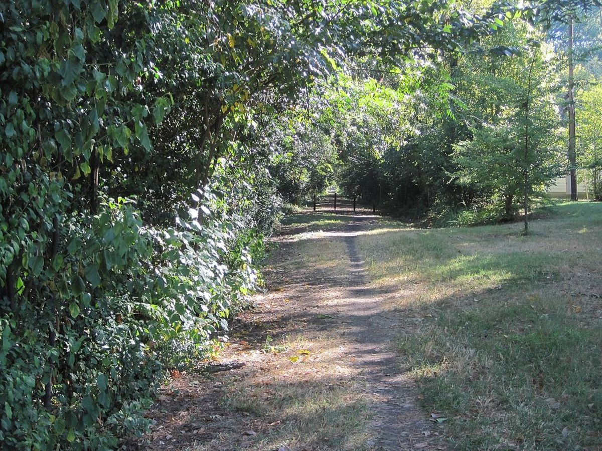V & E Greenline (Vollentine & Evergreen) is a park established on an abandoned railroad track in the Vollintine-Evergreen neighborhood of Midtown Memphis, Tennessee