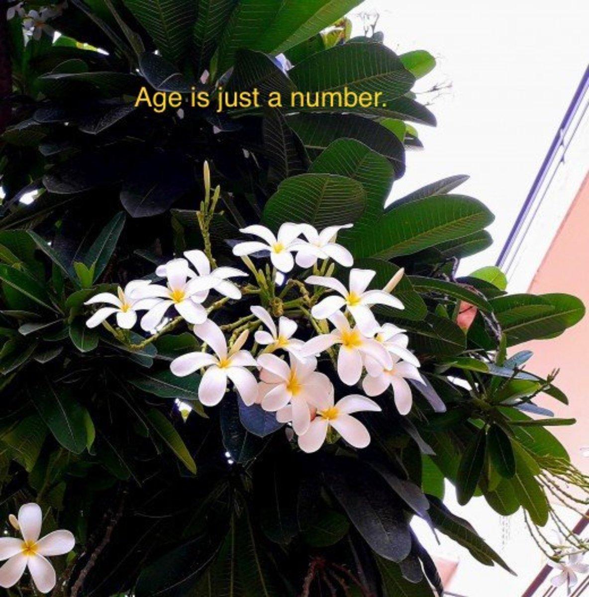 Someone Said Aging! - - Poem