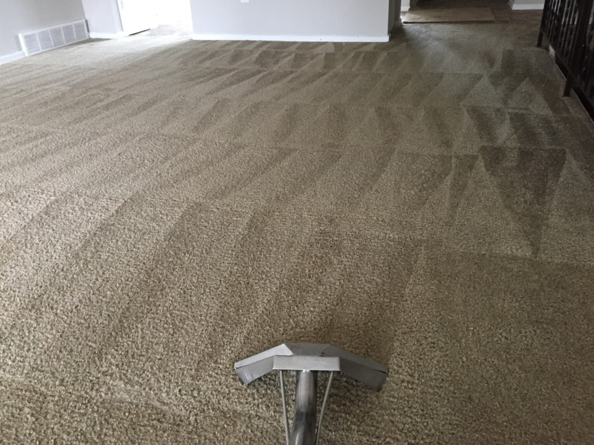 How to Properly Remove Carpet Tar: One Janitor's Perspective