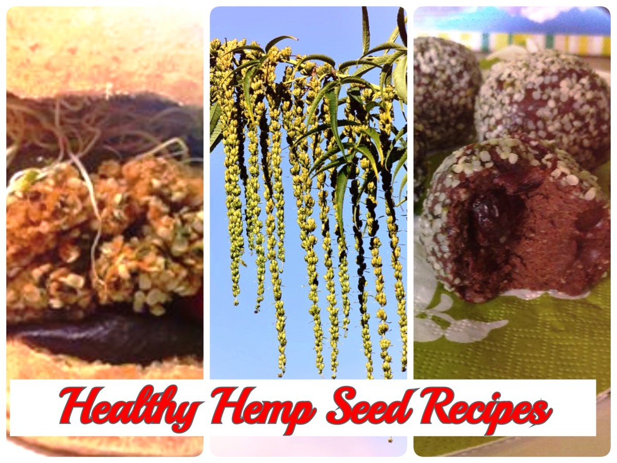 2 Healthy Hemp Seed Recipes for you! Bodacious Hemp Seed Burger and Luscious Max-Energy Balls! Enjoy!
