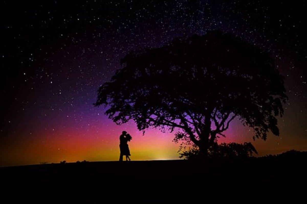 Poetry : Under The Oak Tree