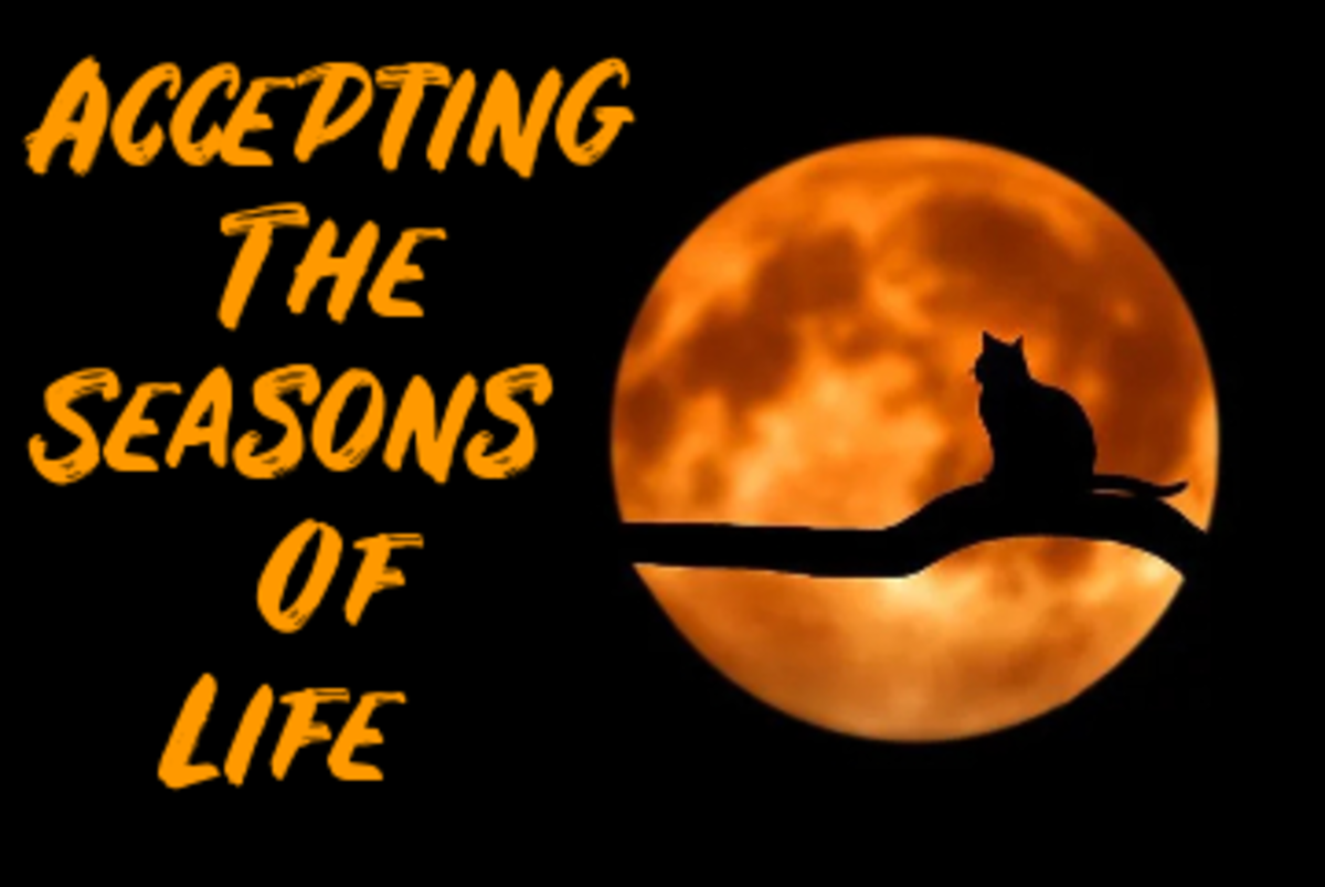 Poem: Accepting the Seasons of Life