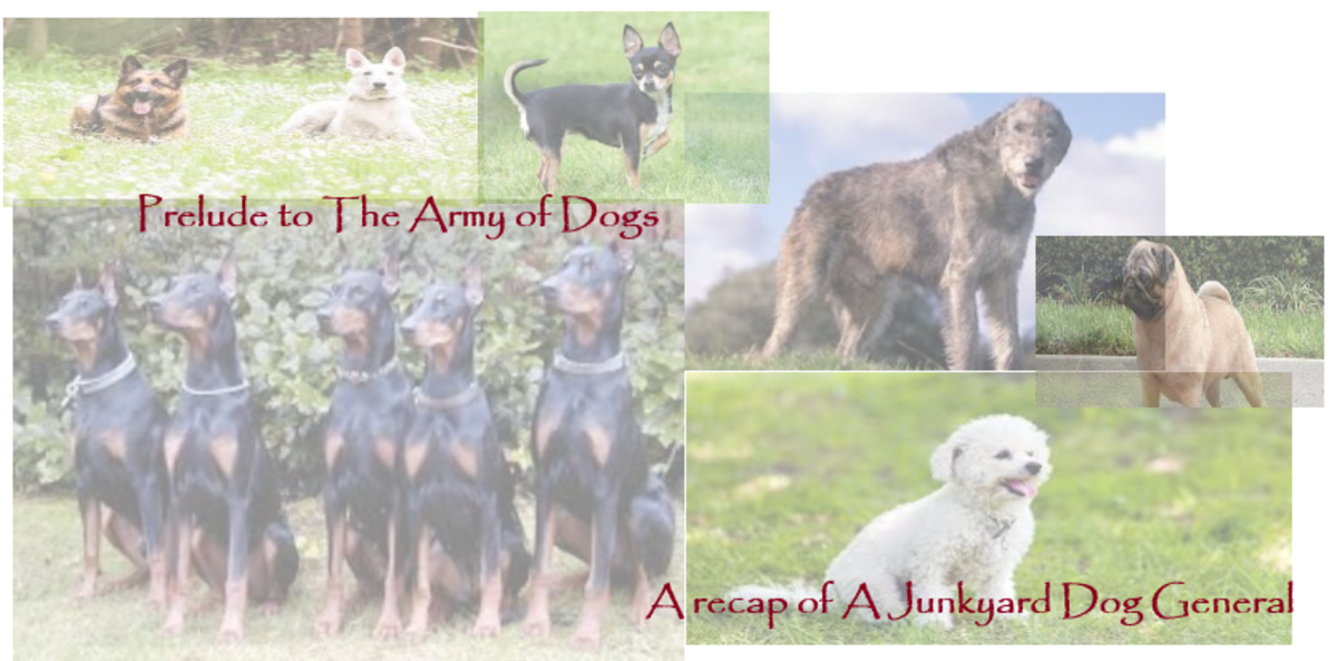 prelude-to-the-army-of-dogs-a-recap-of-a-junkyard-dog-general