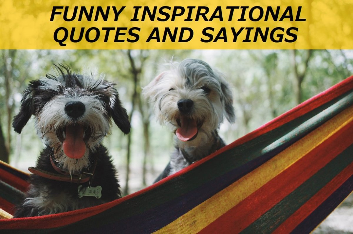 100+ Funny Inspirational Quotes and Sayings
