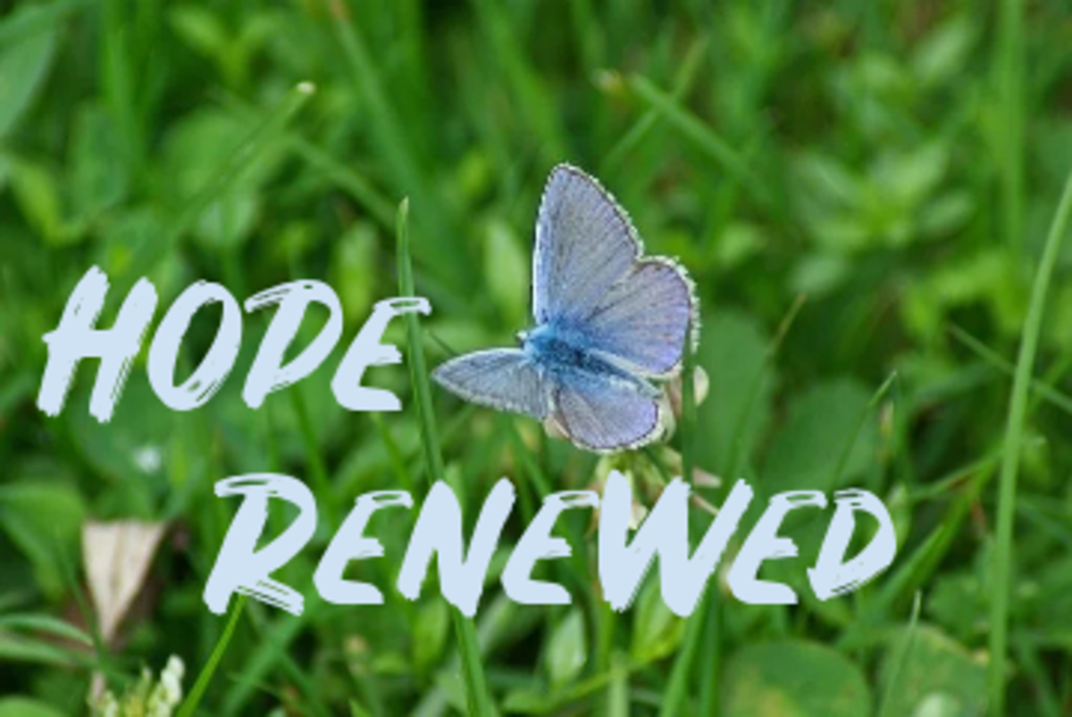 Poem: Hope Renewed