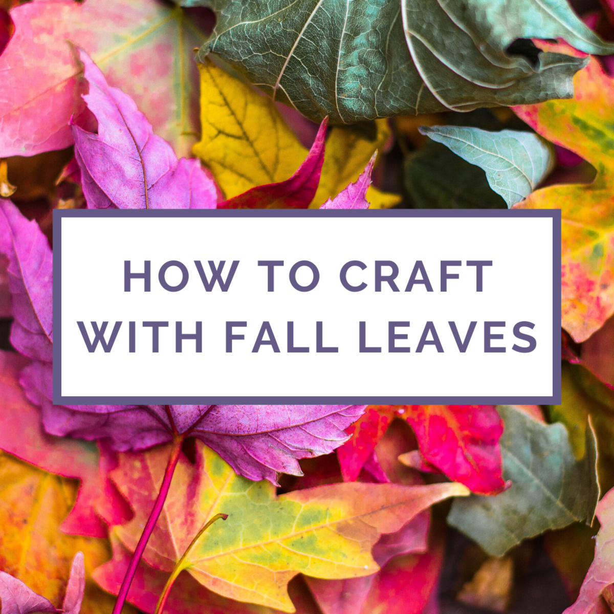 How to Craft With Autumn Leaves (3 Step-by-Step Tutorials)