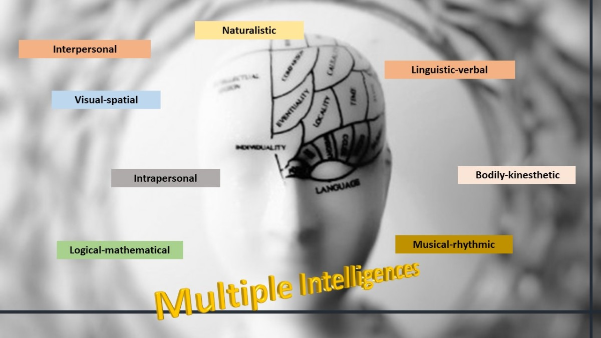 Multiple Intelligences: A Different Way to Understand How We Learn