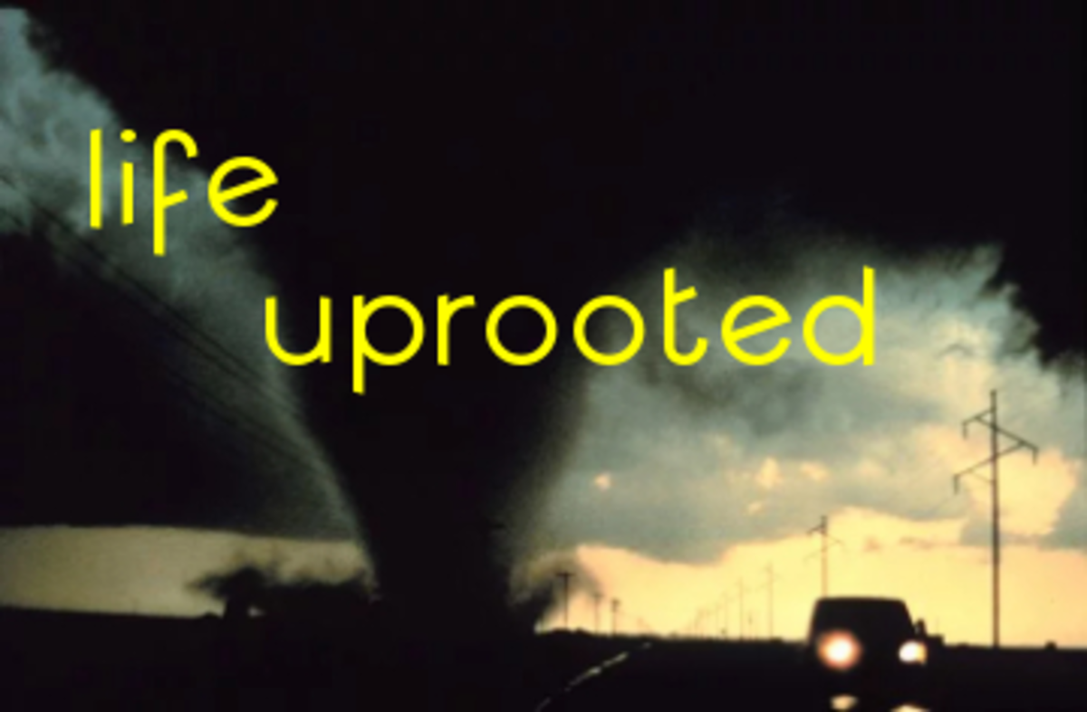 Poem: Life Uprooted