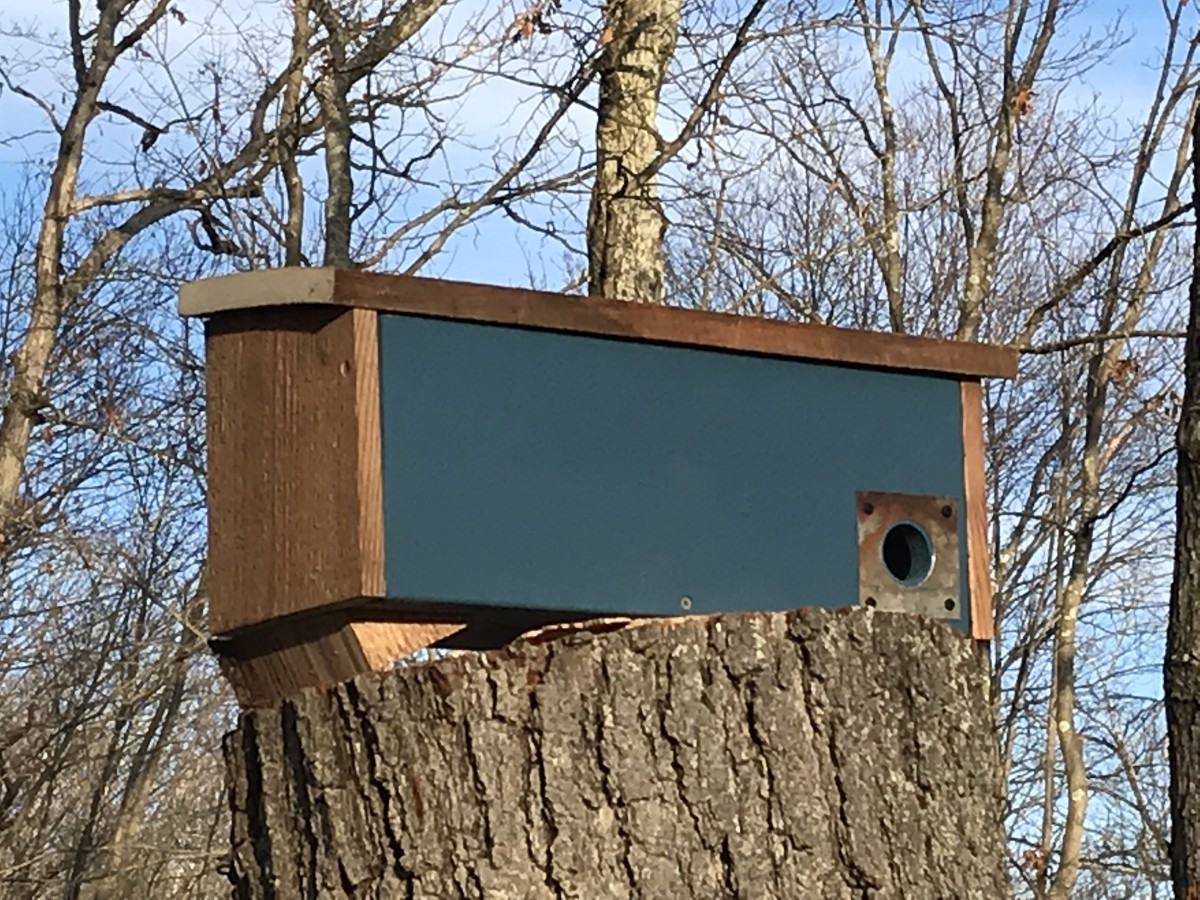 A winter roosting box gives the birds protection from the cold, wind and rain