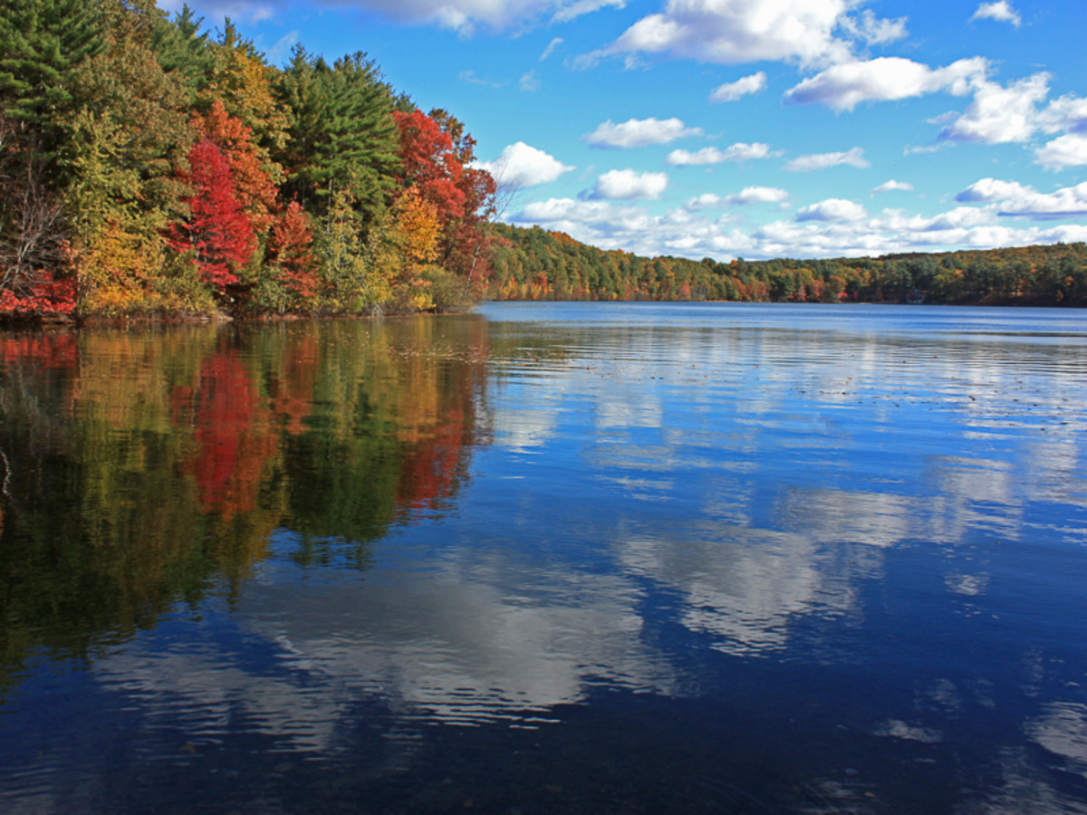 "Walden Pond - The site and source of inspiration for Thoreau's masterpiece, ""Walden"""