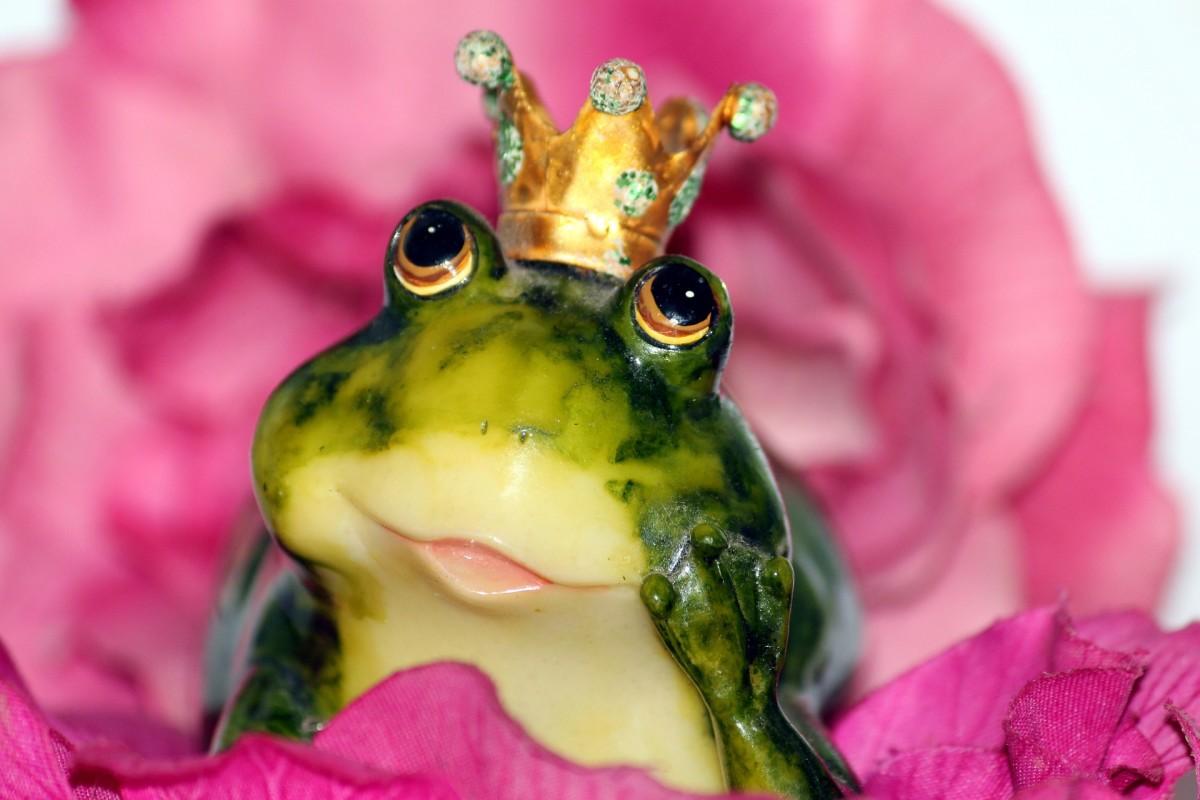 I Once Was a Prince