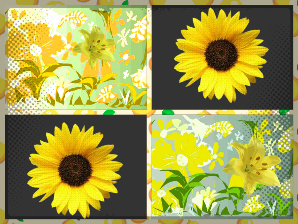 The Vibrant Happy Colour Yellow and its Inspiration