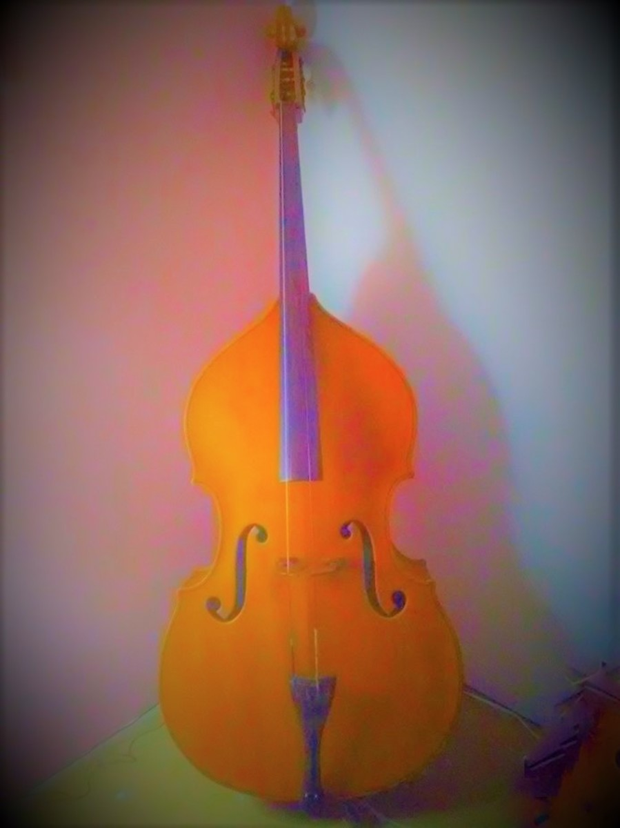 The Story of Daisy, the Double Bass