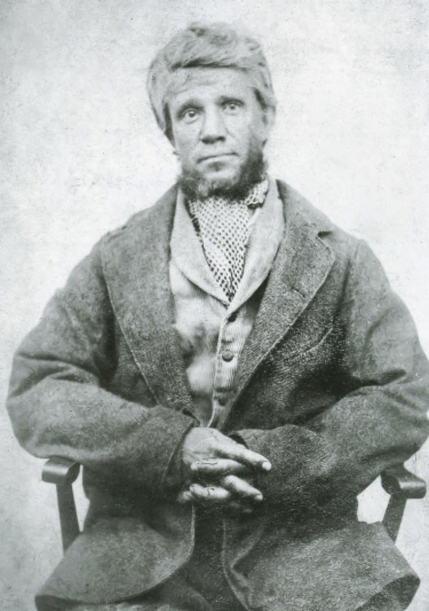 Charles Peace: Victorian Criminal