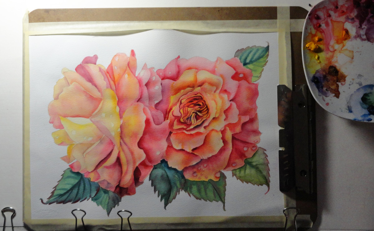 Peach Roses in watercolor on my art table.