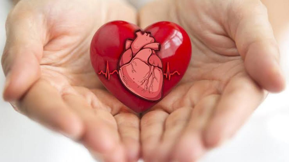 The Cardiac Poem