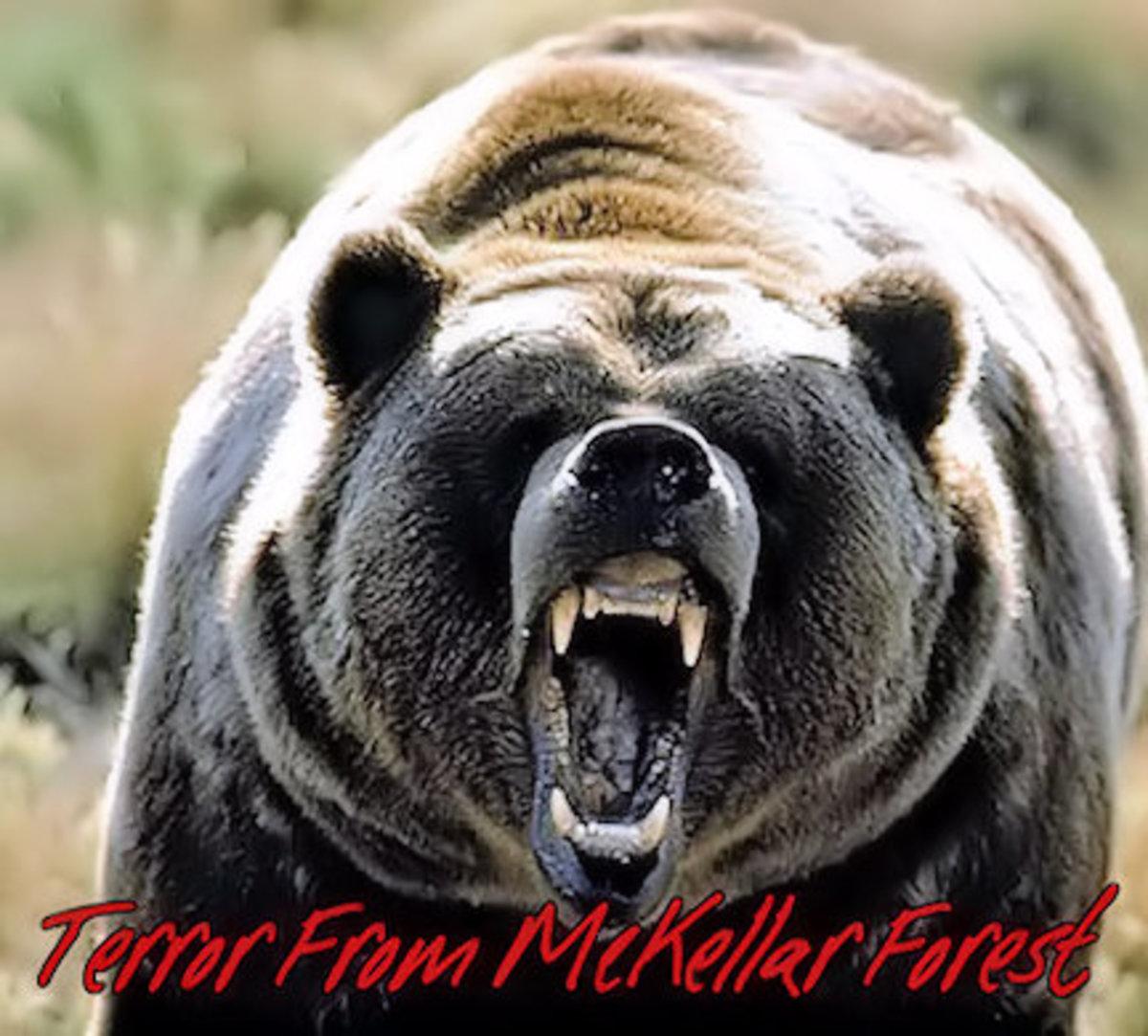 Terror From McKellar Forest 12