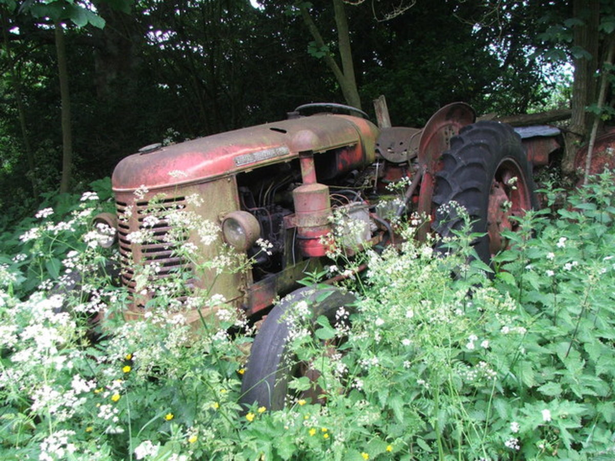 ...Seeing this abandoned old wreck of a tractor brought it all back.