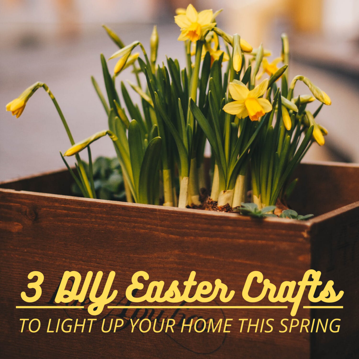 Spruce up your home this spring with these three quick and easy DIY easter crafts.