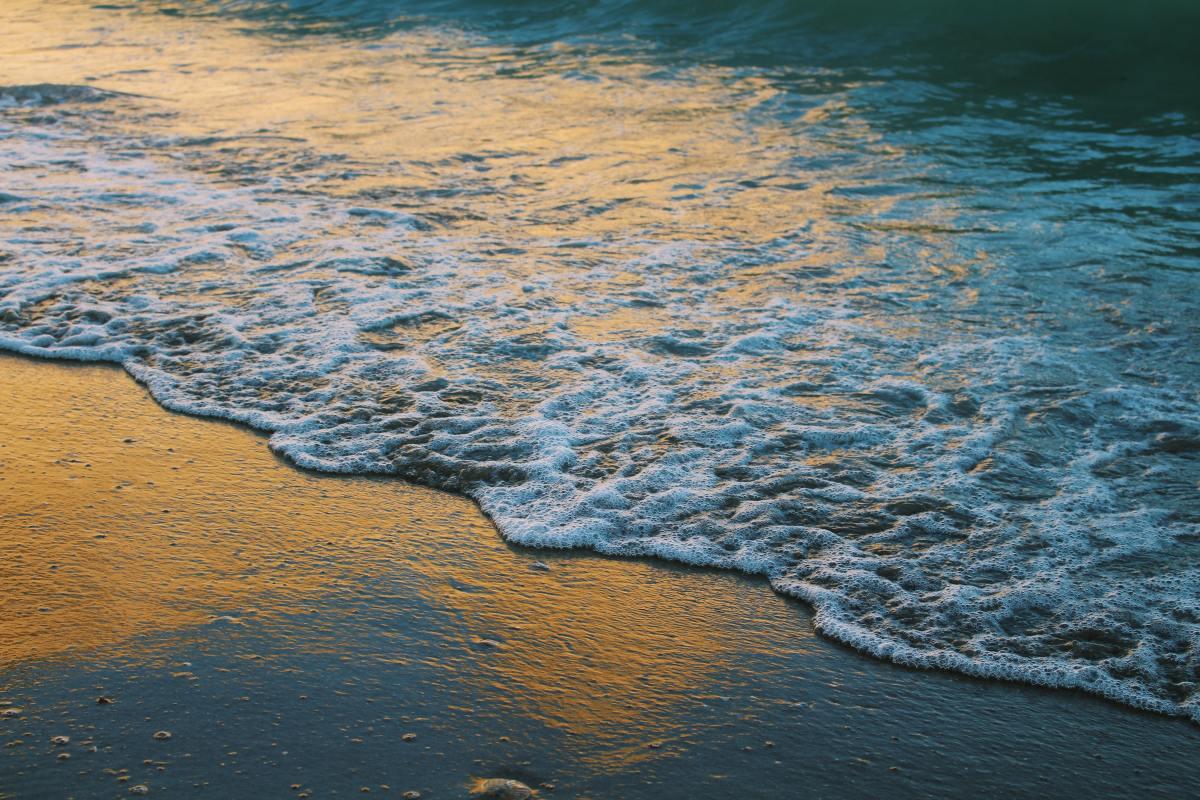 Love's Estuary