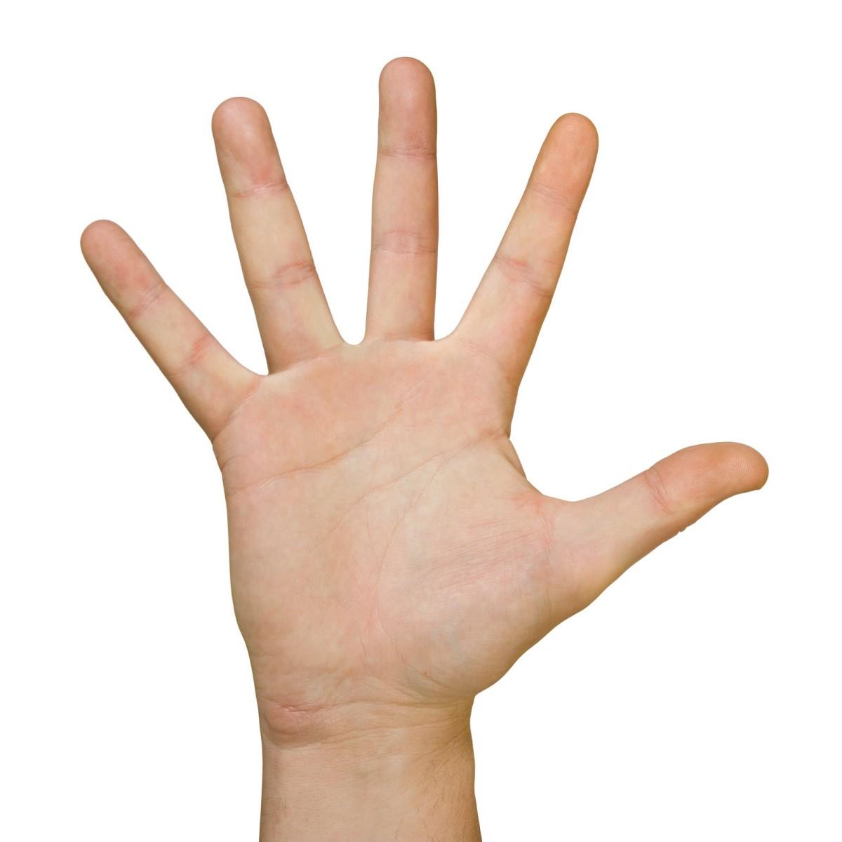 The Rigid Hand