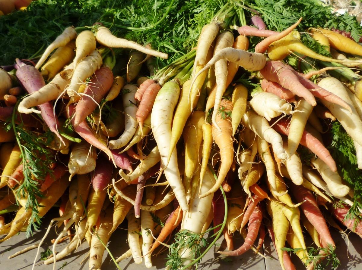 Beautiful Rainbow Carrots at the Eastside Farmer's Market in Houston
