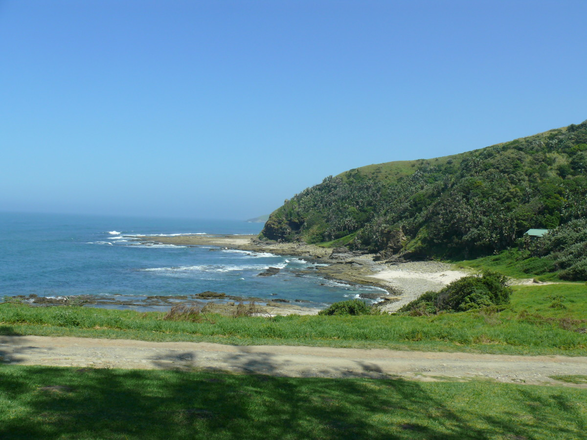 Wild Coast View