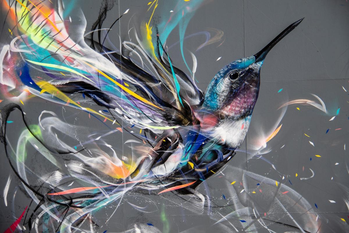 Hummingbirds Haiku