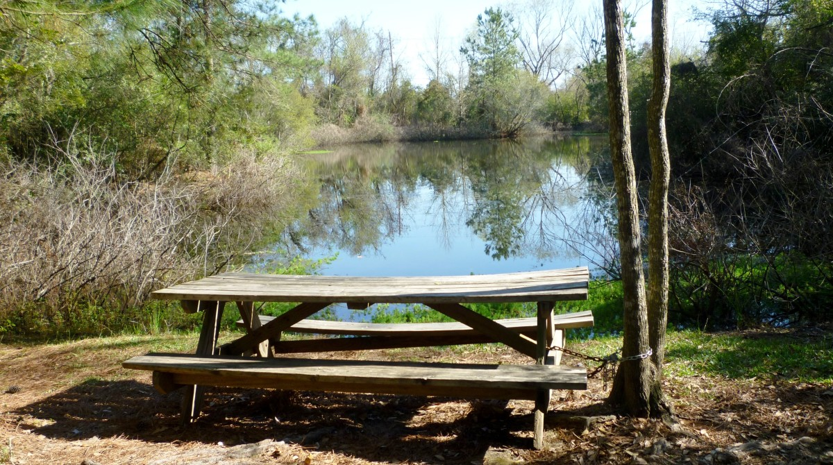Theis Attaway Park: Small Nature Center in Tomball, Texas