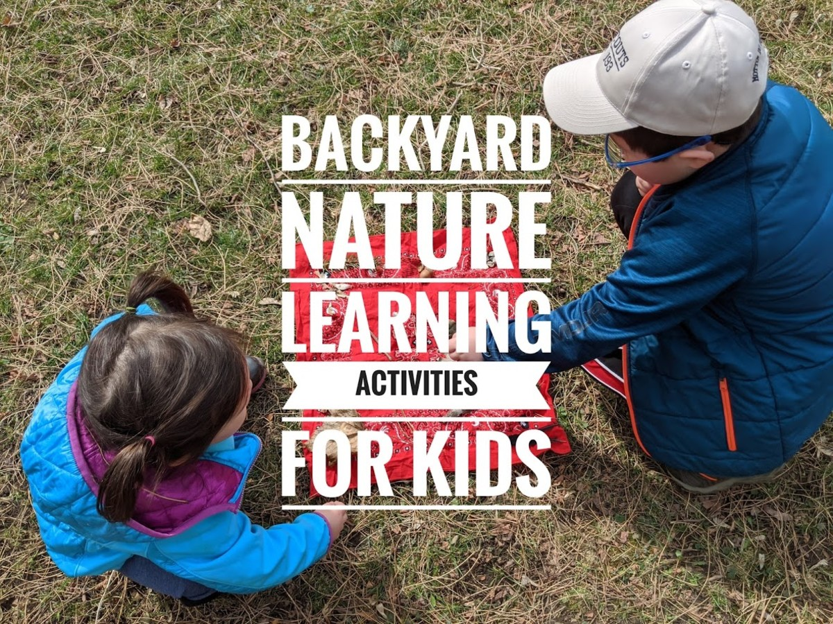 Nature learning activities for kids that they can do in the backyard.