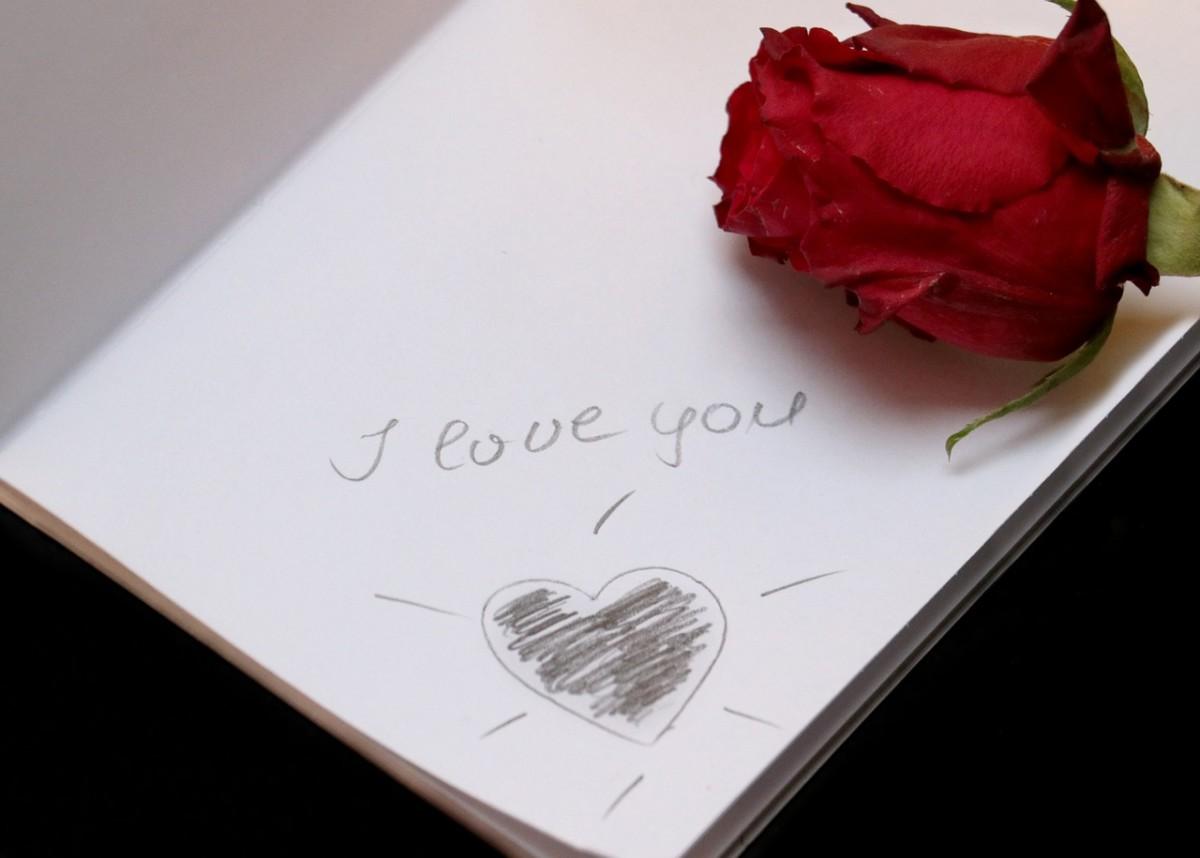 love-letter-to-a-stranger