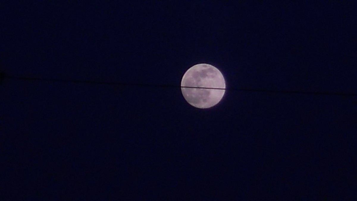 Crow Moon on a Wire