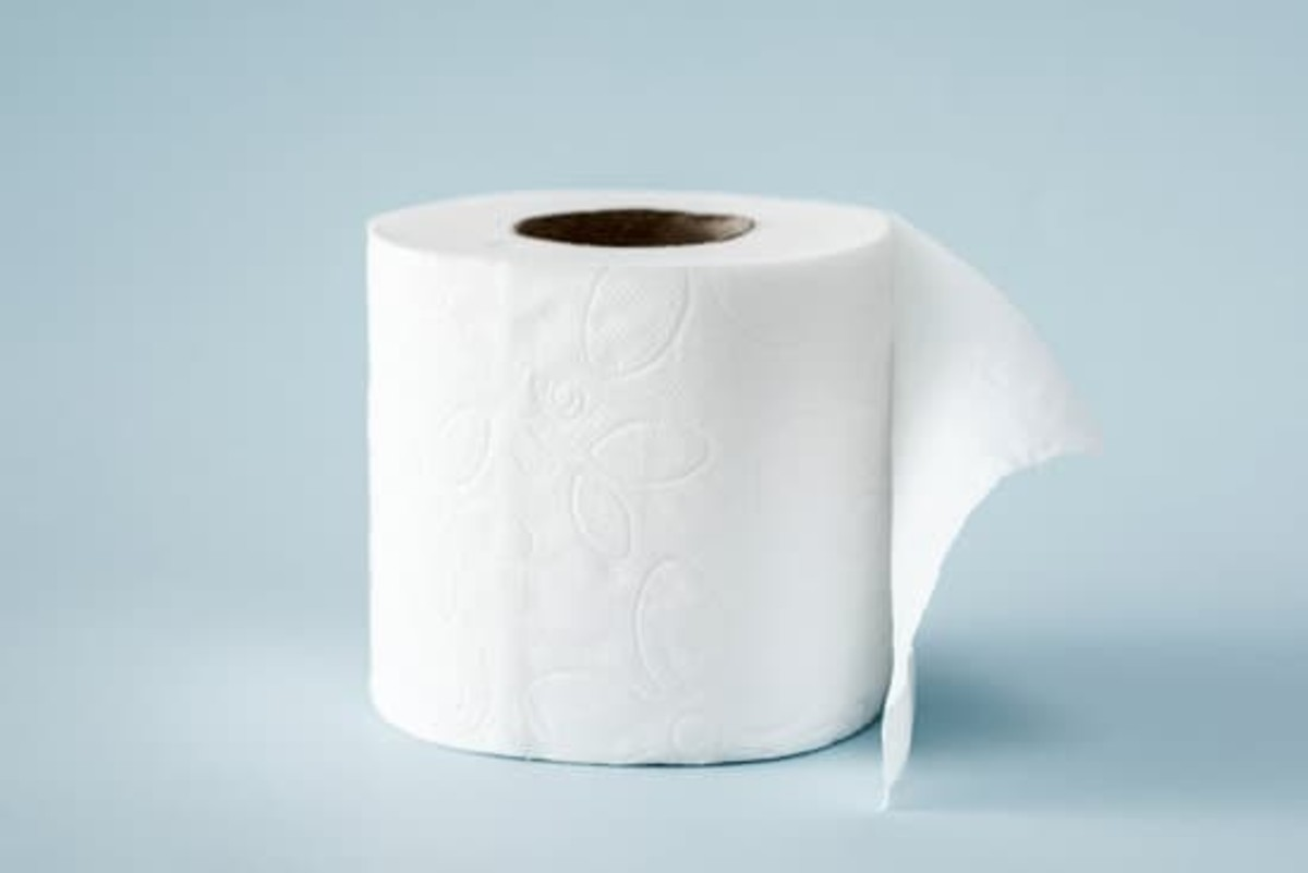 Toilet paper on a roll