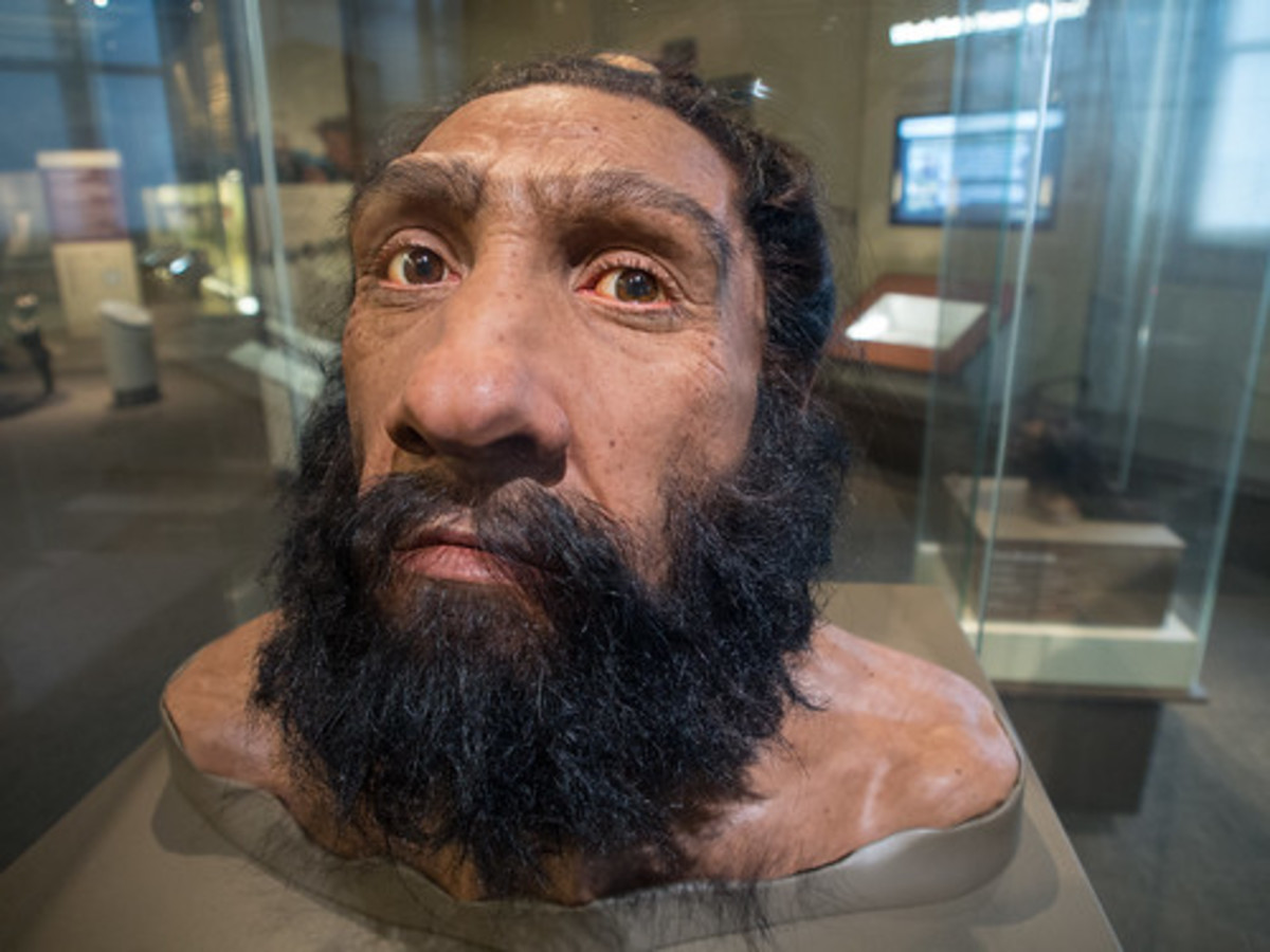 Neanderthals Were Smarter Than You Think