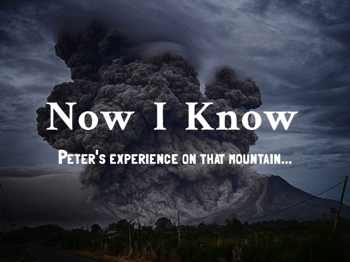 What Peter Saw