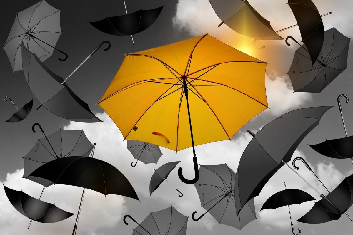 An Umbrella In My Shower