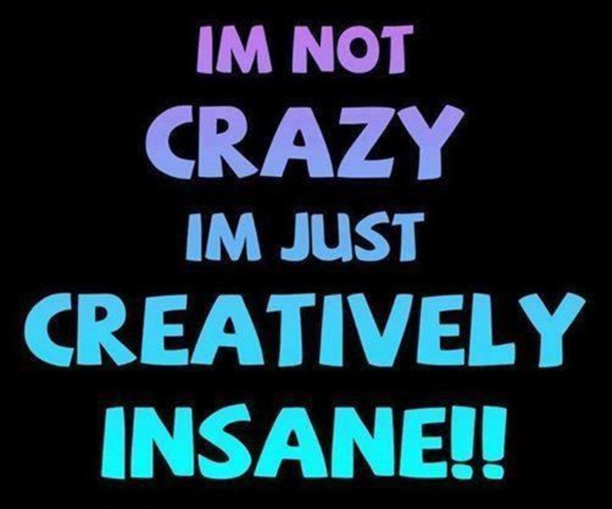 I'm not Crazy, Just Creatively Insane