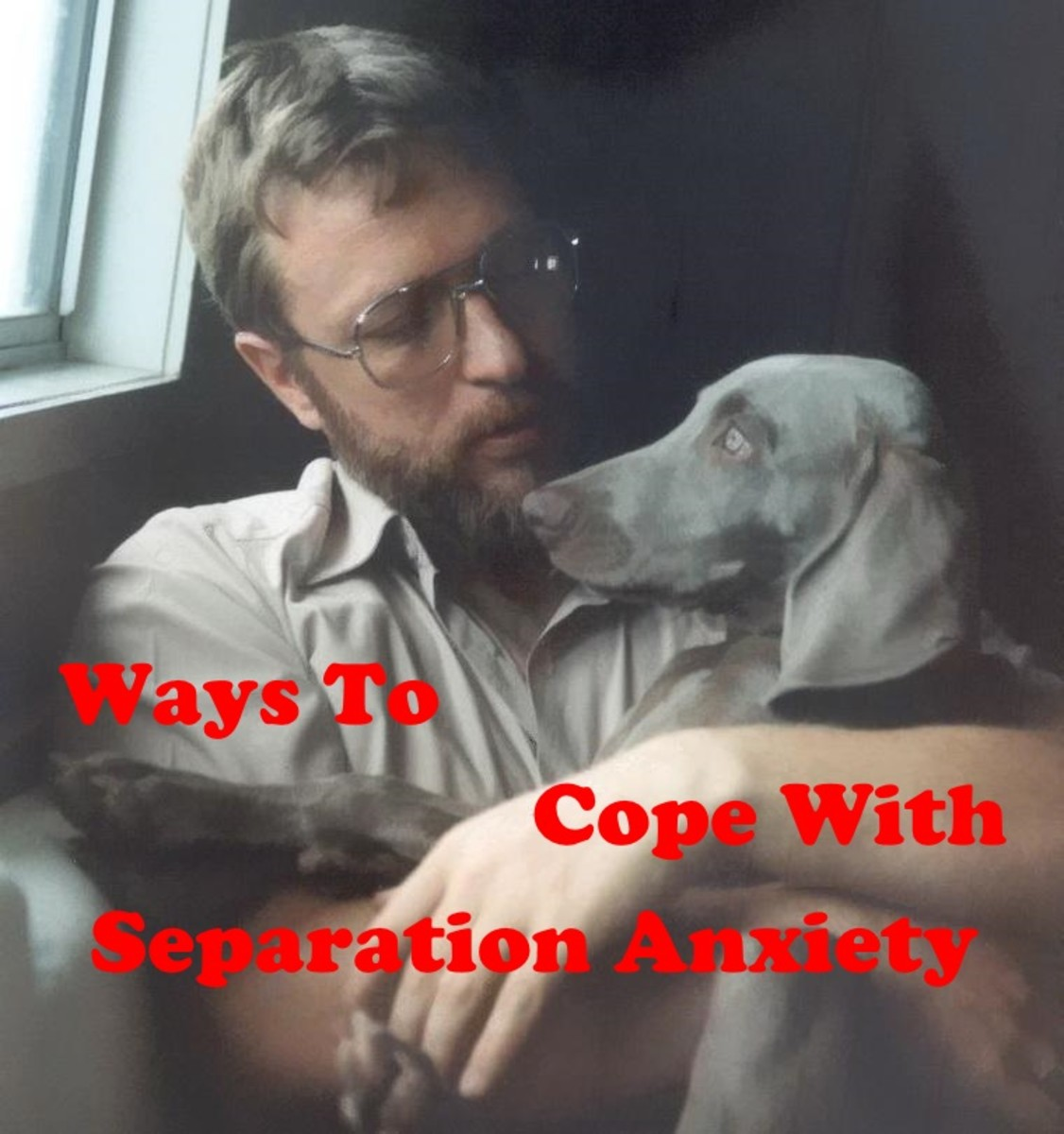 Tips to deal with separtion anxiety, no matter what size dog.