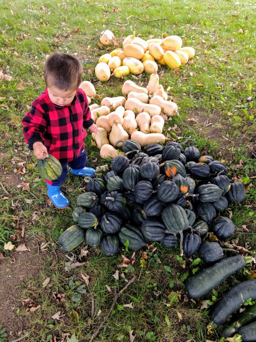 gardening-with-your-kids