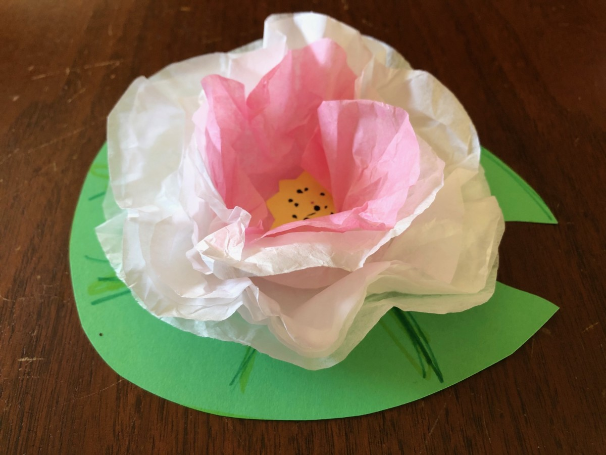 A completed waterlily made from construction paper and tissue paper.