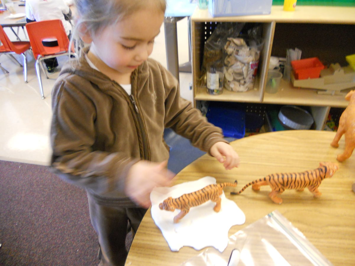 Making Animal Tracks in White Clay