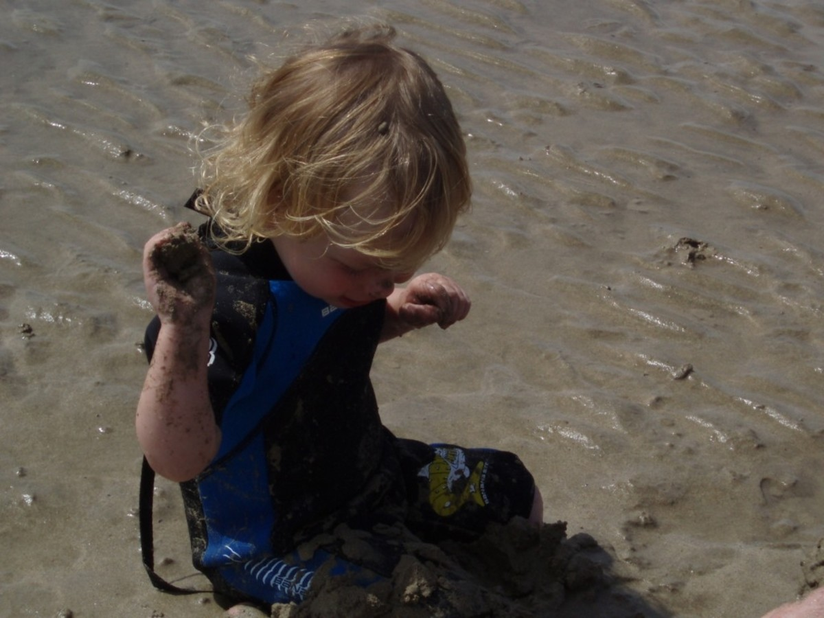 Toddler wetsuits are very sweet